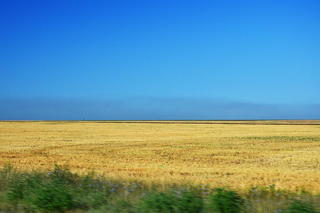 «Ұлы даланың жеті қыры» — Қазақстан Президенті Н.Назарбаев